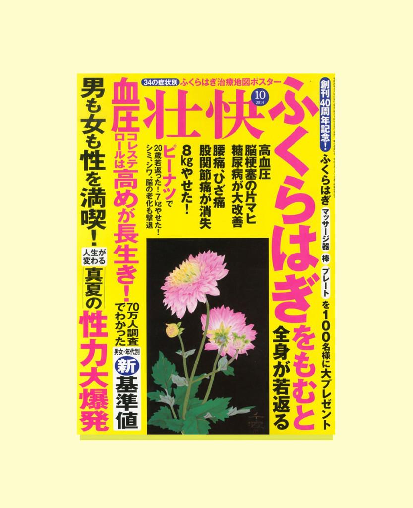 sokaibook1